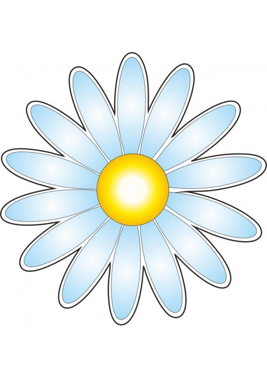 Λουλούδι θαλασσή