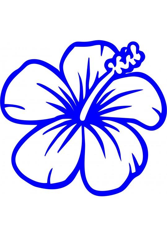 διακοσμητικο λουλουδι για το μπάνιο