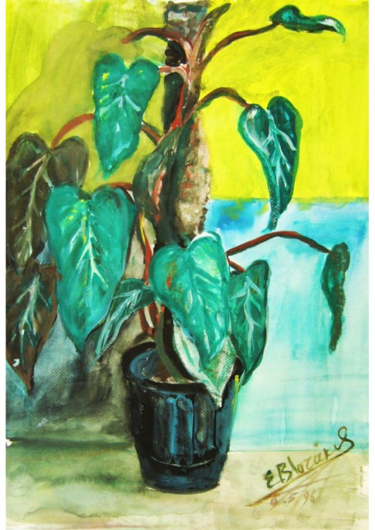 plant Αντίγραφο τυπωμένο σε καμβά